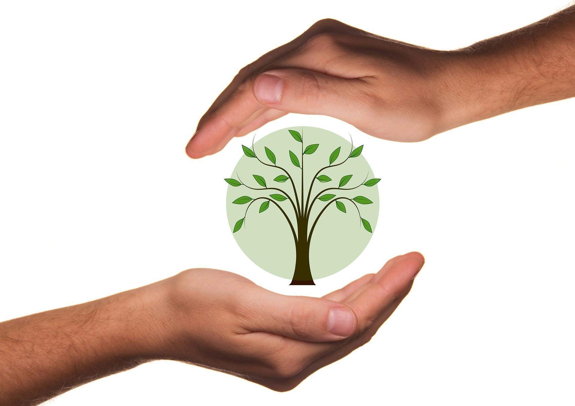 48a edizione di Filo all'insegna della sostenibilità
