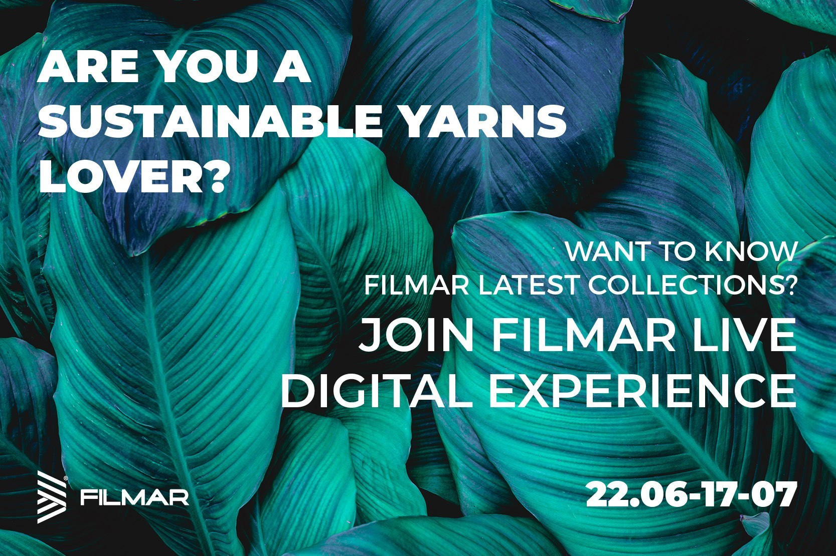 Filmar Focuses On Digital With The Live Digital Experience