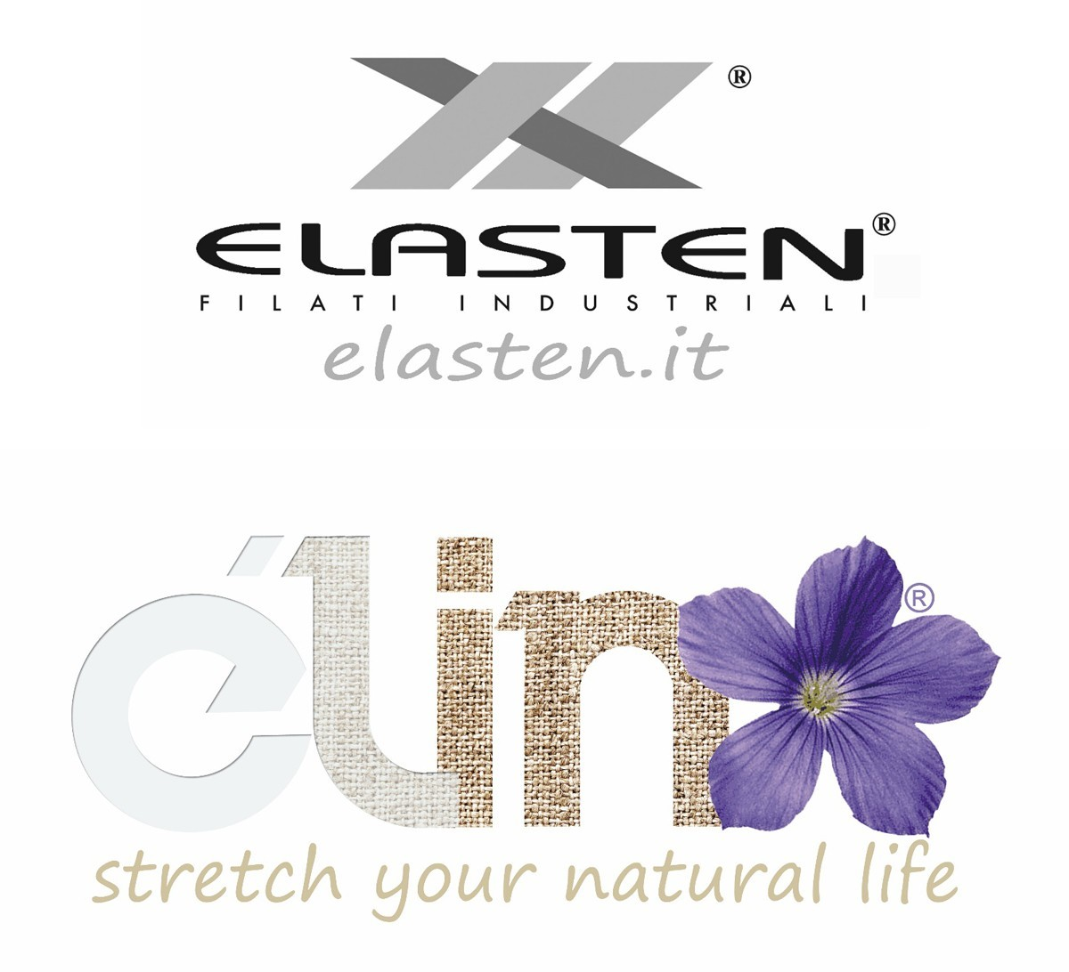 Elasten Focuses On Élin Yarns
