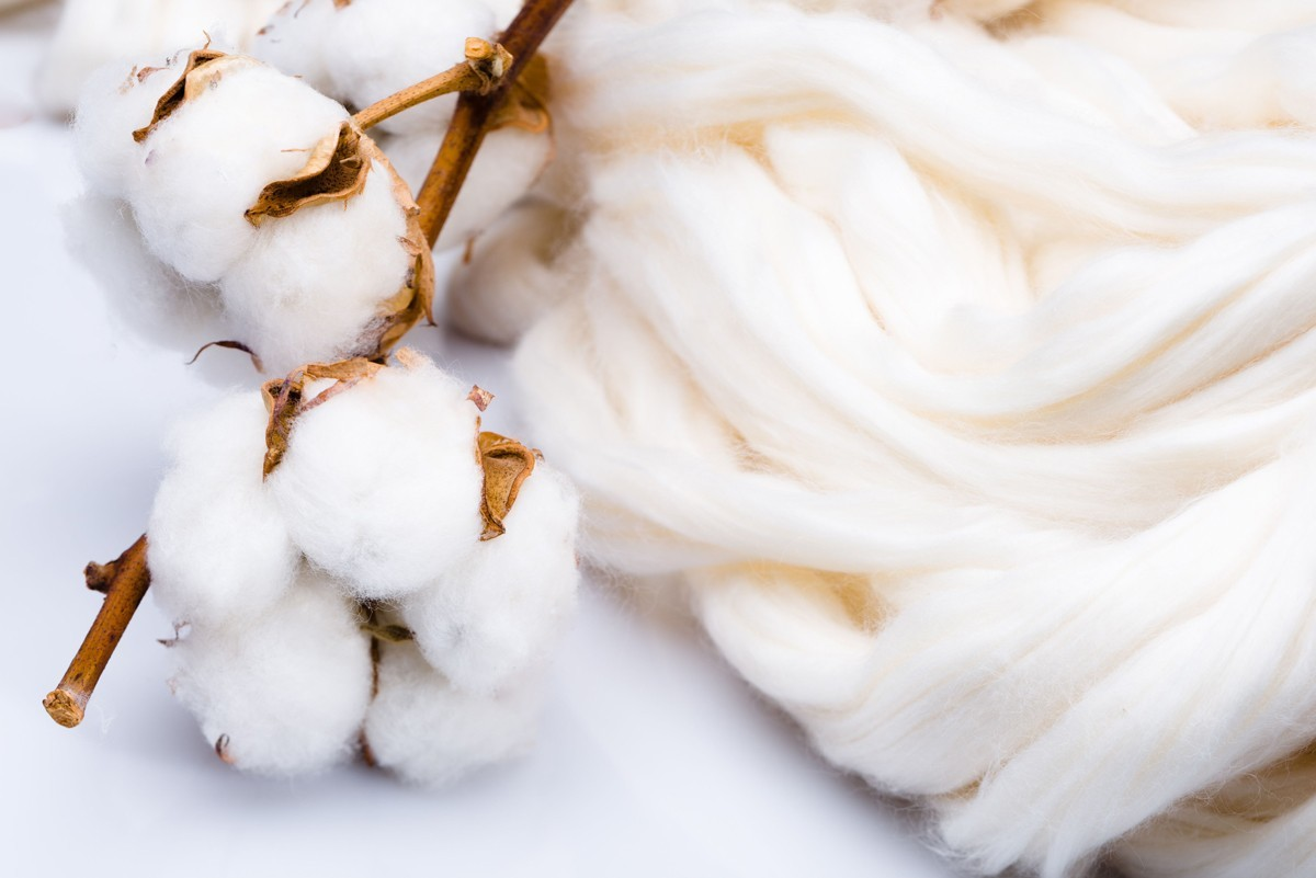 Biofusion, The New Innovative Yarn By Ica